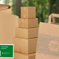 Holz, Papier und Karton – die umfangreiche Materialkunde zu den beliebten Rohstoffen