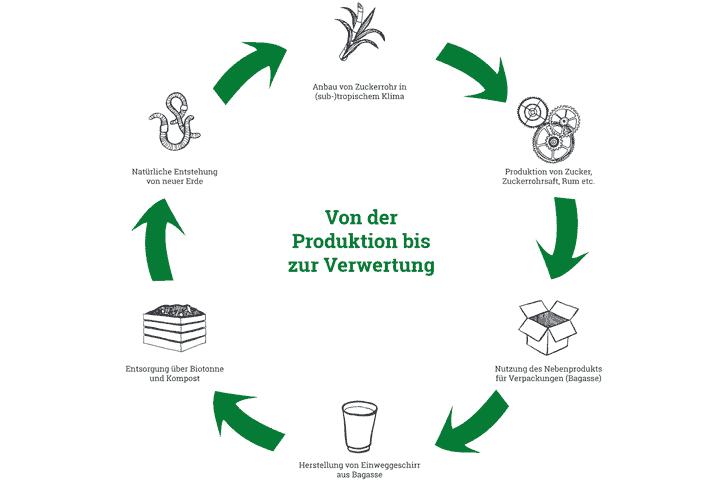 Infografik...wie aus Zuckerrohr Bagasse wird!